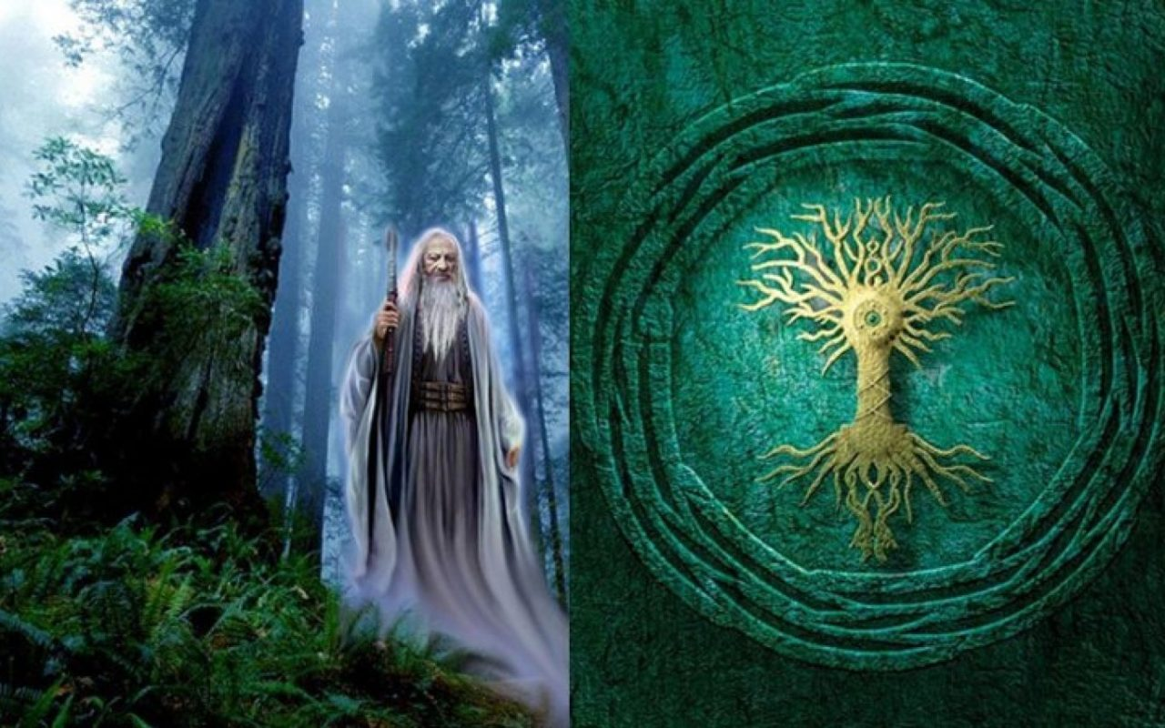 hight resolution of the symbolic meaning behind the celtic tree of life
