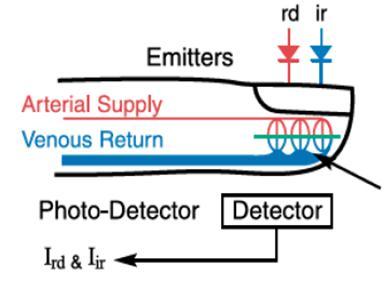 Capteur digital de l'oxymètre (qhrv.fr)