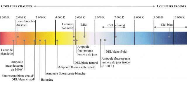 Comparatif Des Diffrents Types Dampoules