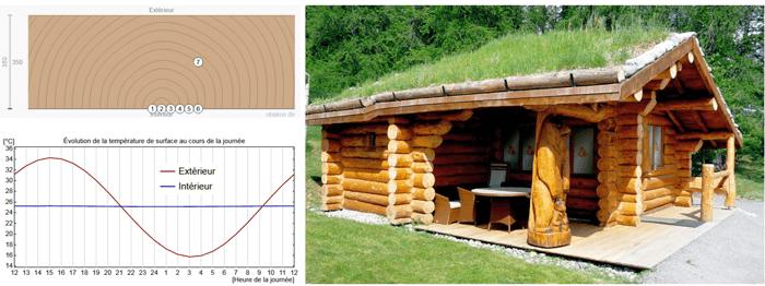 maison en rondin toiture vegetalisee
