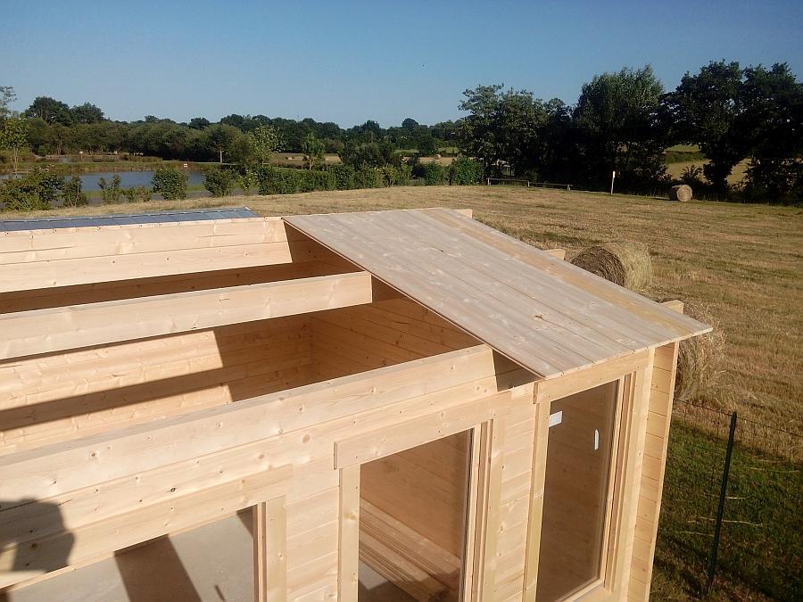 Contenu construire abri jardin for Comfabriquer son abri bois