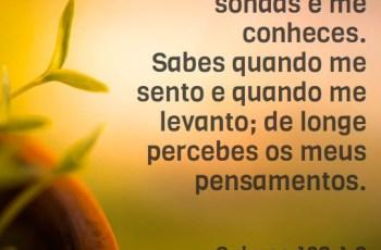Palavra do dia – Salmos 139