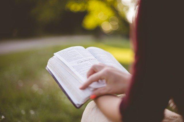 Como Discipular um Novo Convertido - Lendo a Bíblia