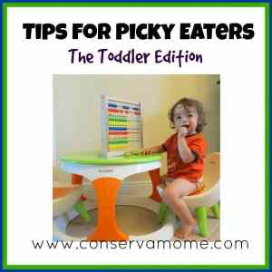 Tips for a Picky Eater