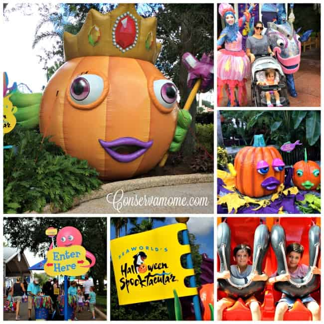 Find out all the great adventures you can have in 48 hours in Orlando in the Fall