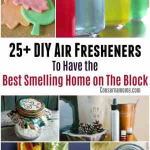 25 DIY Air Fresheners To Have the Best Smelling Home on The Block