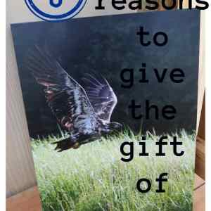 5 Reasons to Give the Gift of Canvas Factory + Giveaway