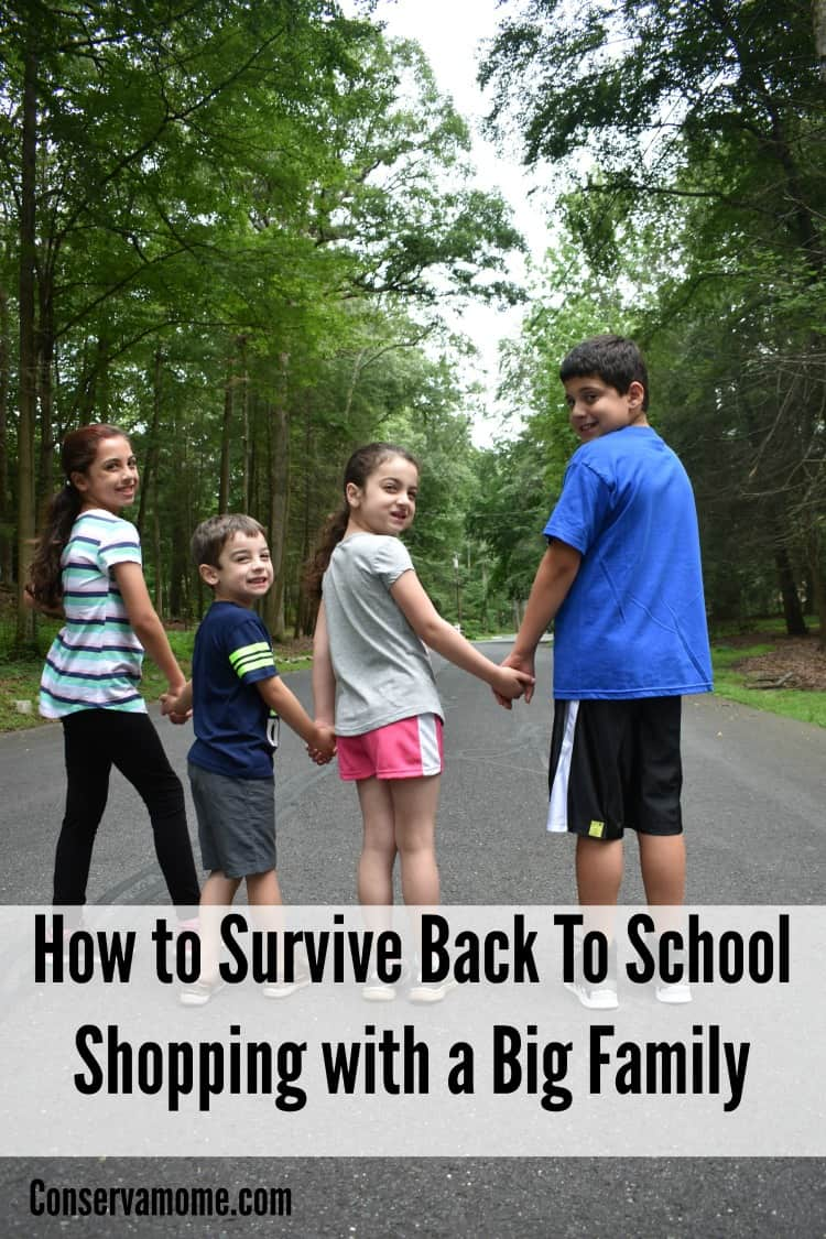 Here are some fun tips to help you survive back to school shopping with a big family.