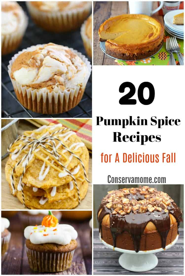 What is more Fall than Pumpkin Spice? Here are 20 Pumpkin Spice Recipes for a Delicious Fall that will be perfection!