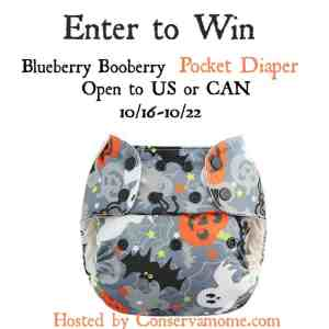 Blueberry Booberry Cloth Diaper Giveaway ends 10/22