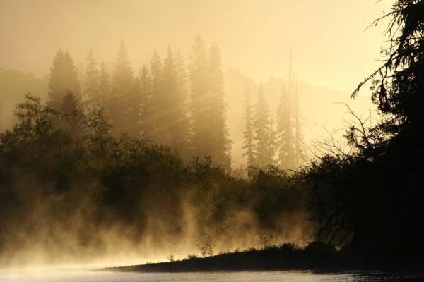 Morning mist on the Horsefly River