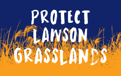 Call on Defence Housing Australia to stop suburban development over endangered grasslands in the ACT