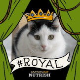 Eddie Nutrish Royal Jungle