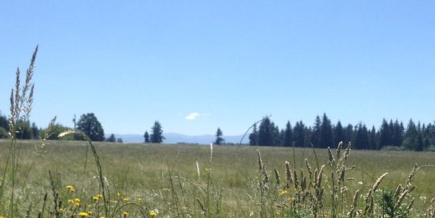 Clackamas Pastureland