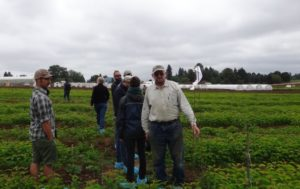 Klock and other District staff attend a field solarization field day tour.