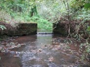 This in-stream dam on Corral Creek restricted passage for native fish.