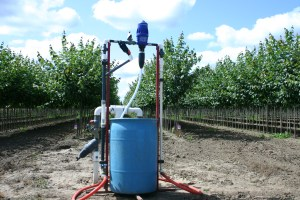 Fertigation through a drip system is efficient and saves water.