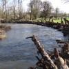 Milk Creek looking upstream - 12/5/2012