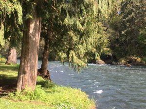 The Molalla River is a popular spot for recreation during the summer.
