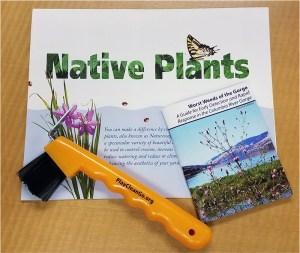 Claim your free Native Plant Appreciation Week Field Kit.