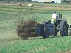 Recycling nutrients build soil structure and organic matter.
