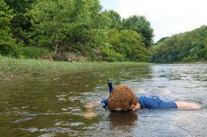Snorkeler_river USFWS Westcott Phillip