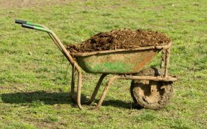 One horse can create 50 lbs of manure in one day!