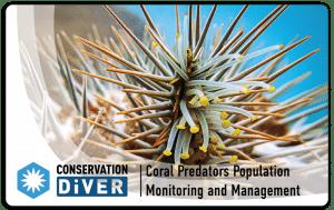 Coral Predators_PRINT_dropshadow