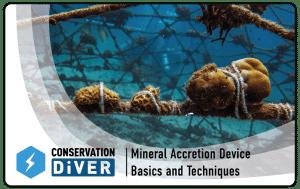 Mineral acretion device_PRINT_glow