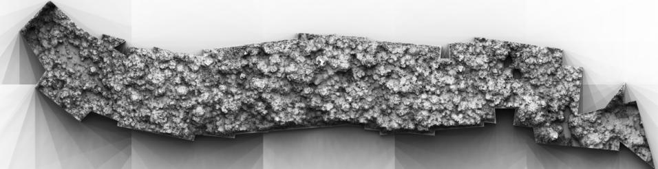 3D Digital Surface Model