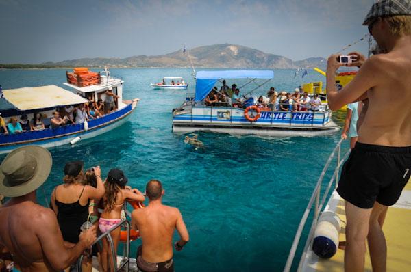 Turtle Spotting Cruise, Zakynthos. Picture courtesy of Earth, Sea & Sky