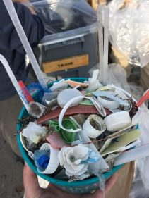 BeachCleanup