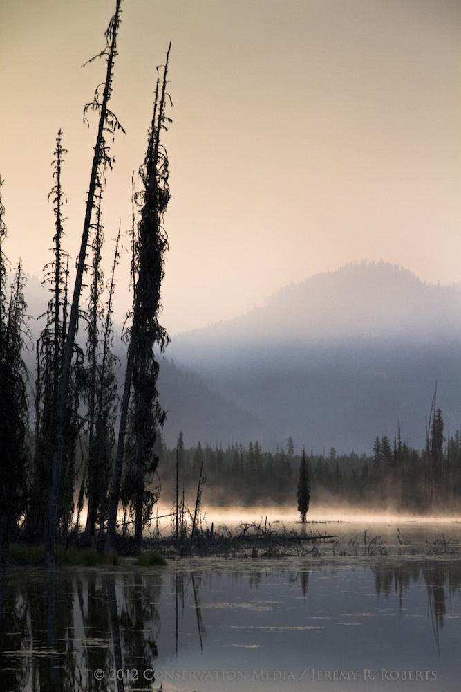 Smoky Landscape