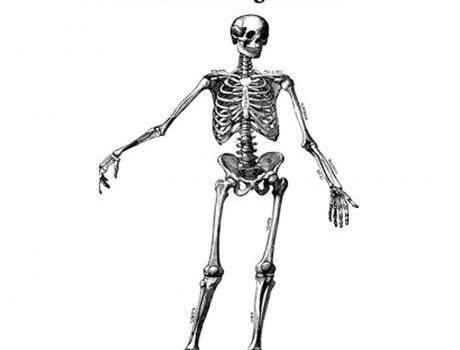 Anatomy Conservative Orthopedics