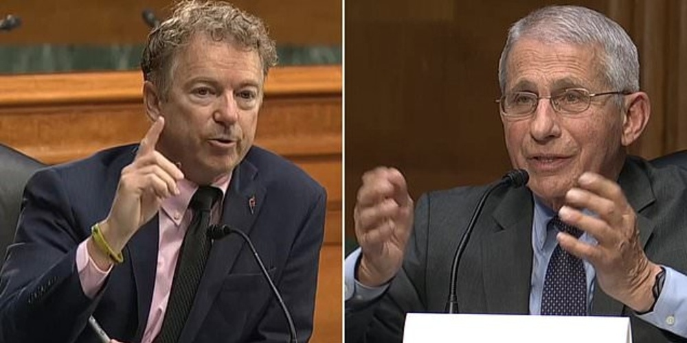 Fraudulent Fearmonger Fauci Folds Under Pressure from Rand Paul Over 'Gain of Function' Research