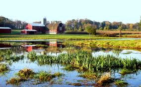 farm and wetlands