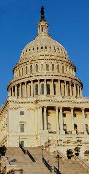 Congress 22