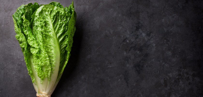 Is It Okay To Eat Romaine Lettuce Consider The Consumer