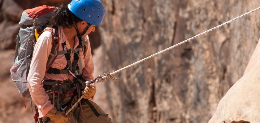 Petzl Safety Ropes Recall Consider The Consumer