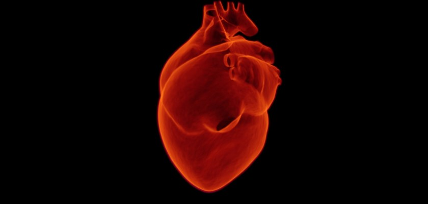 Cardiac Patch Set To Make Waves in Heart Attack Recovery Process Consider The Consumer