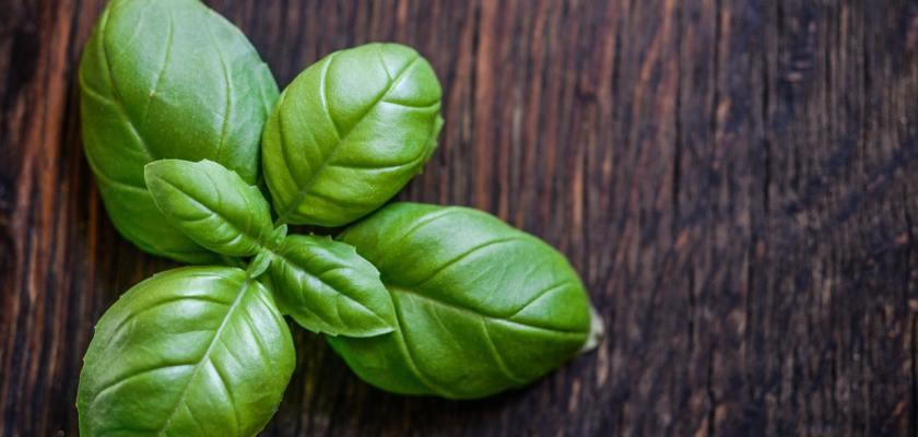 Organic Basil Recall