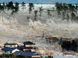 tsunami2_20110311085351_320_240