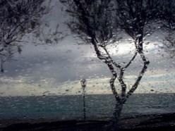 Cosa significa sognare pioggia, sognare un temporale o sognare un diluvio?