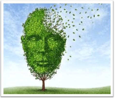 Como Cuidar Nuestra Salud Mental