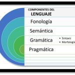¿Cuales Son Los Componentes Del Lenguaje Y Cuales Son Sus Usos?