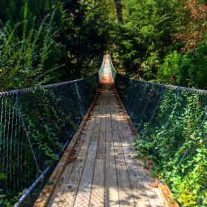 America's longest swinging bridge