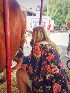 Sophie milking a cow