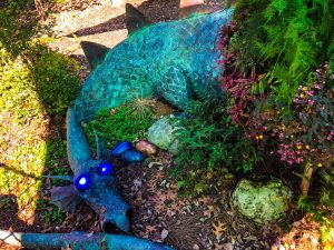 Wizards Garden at Highfield Discovery Center