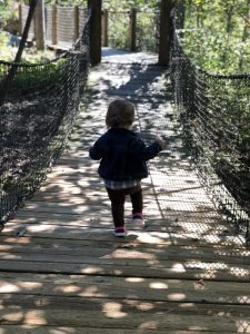 Swaying Bridge at Highfield Discovery Center