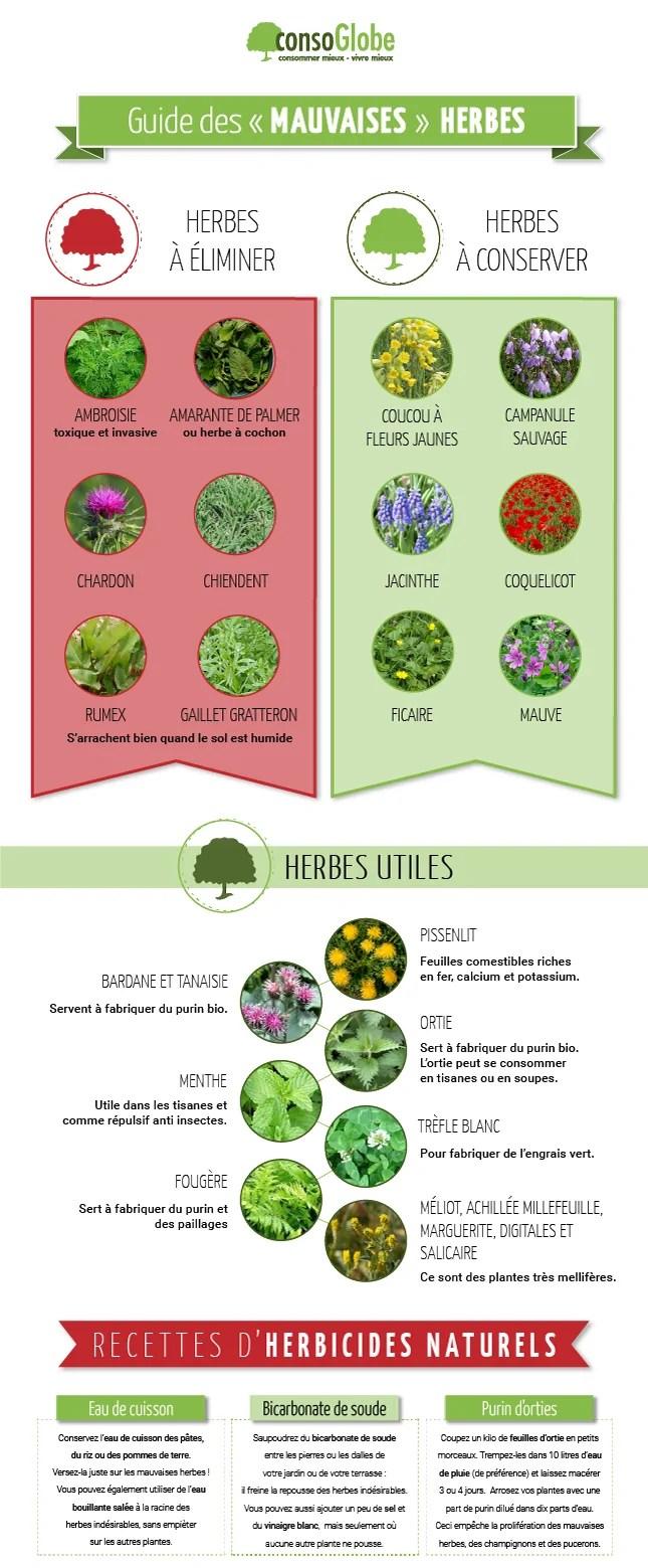 Liste Des Mauvaises Herbes Avec Photo : liste, mauvaises, herbes, photo, Comment, Identifier, Mauvaises, Herbes, éliminer